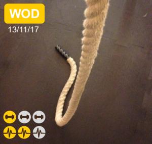 wod rope